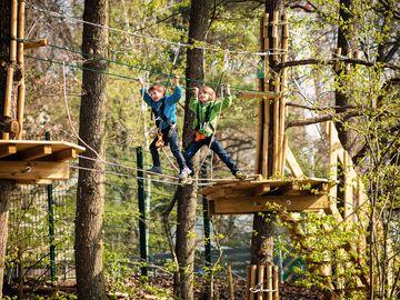Ansicht auf Kinder beim Klettern im Waldkletterpark Leiwen.